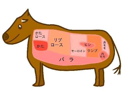 牛肉の部位名