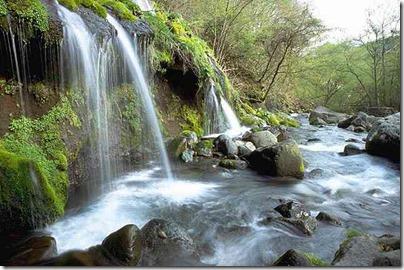 山の湧き水