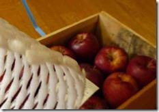 青森十和田産のりんご