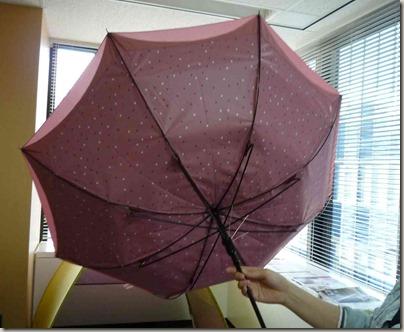 おちょこになった傘