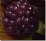 フラワーケーキベリー木苺