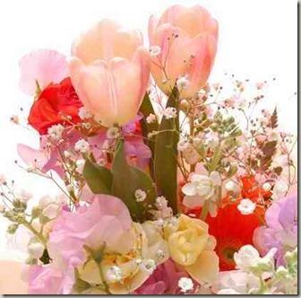 チューリップとかすみ草花束