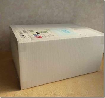 ブラデリス補整ブラの配送時の白い箱