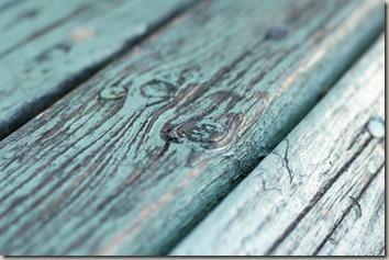 木のテスクチャ