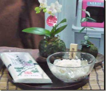 手のひら胡蝶蘭と葛の涼味セット