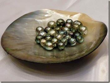 真珠卸屋グレーのパールネックレス