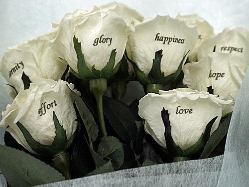 白いバラの花束12本
