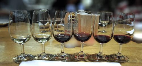 飲み比べる6種のワイン