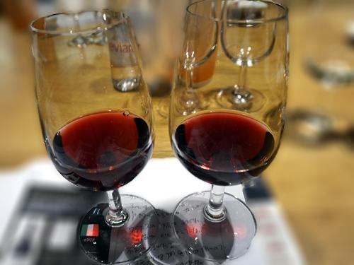 イタリアの白ワインと同じ緯度のフランスワイン