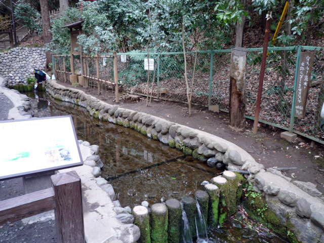 南沢湧水群の水汲み場