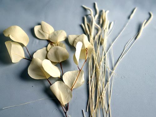 イイギリの葉っぱとパンパスグラス