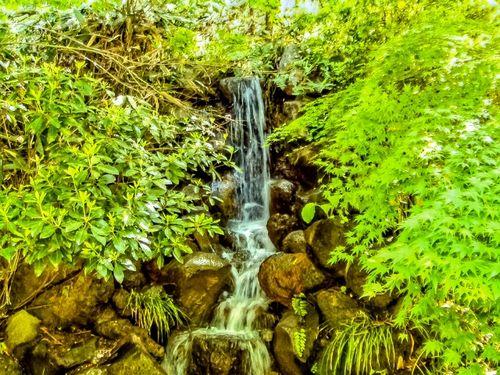 田舎の湧き水